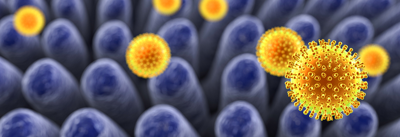 Rotavirus Vaccine: A Decade of Saving Lives